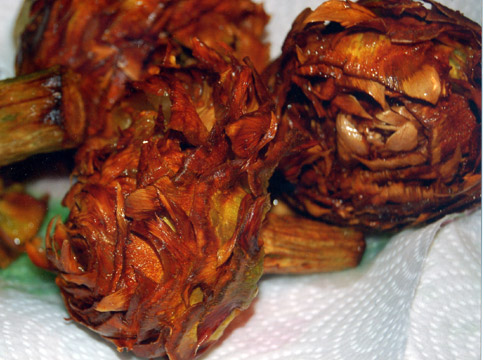 Food - Fried artichokes